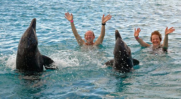 Zwemmen met dolfijnen - Excursies Corendon