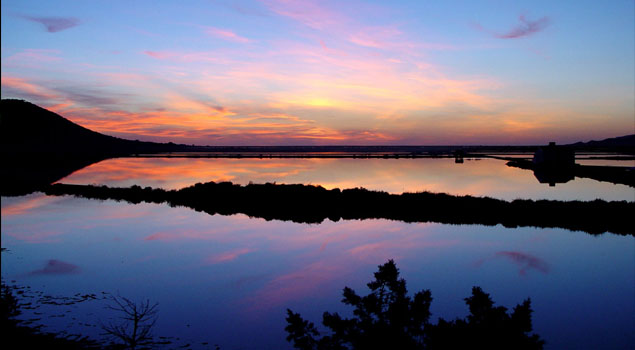 Ses Salines National Park
