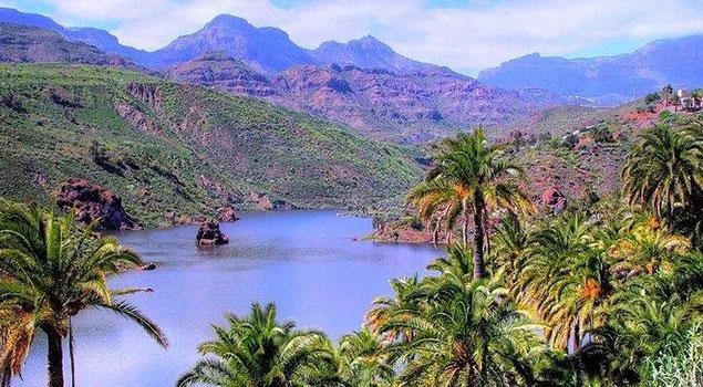 Het Gran Canaria van Dick